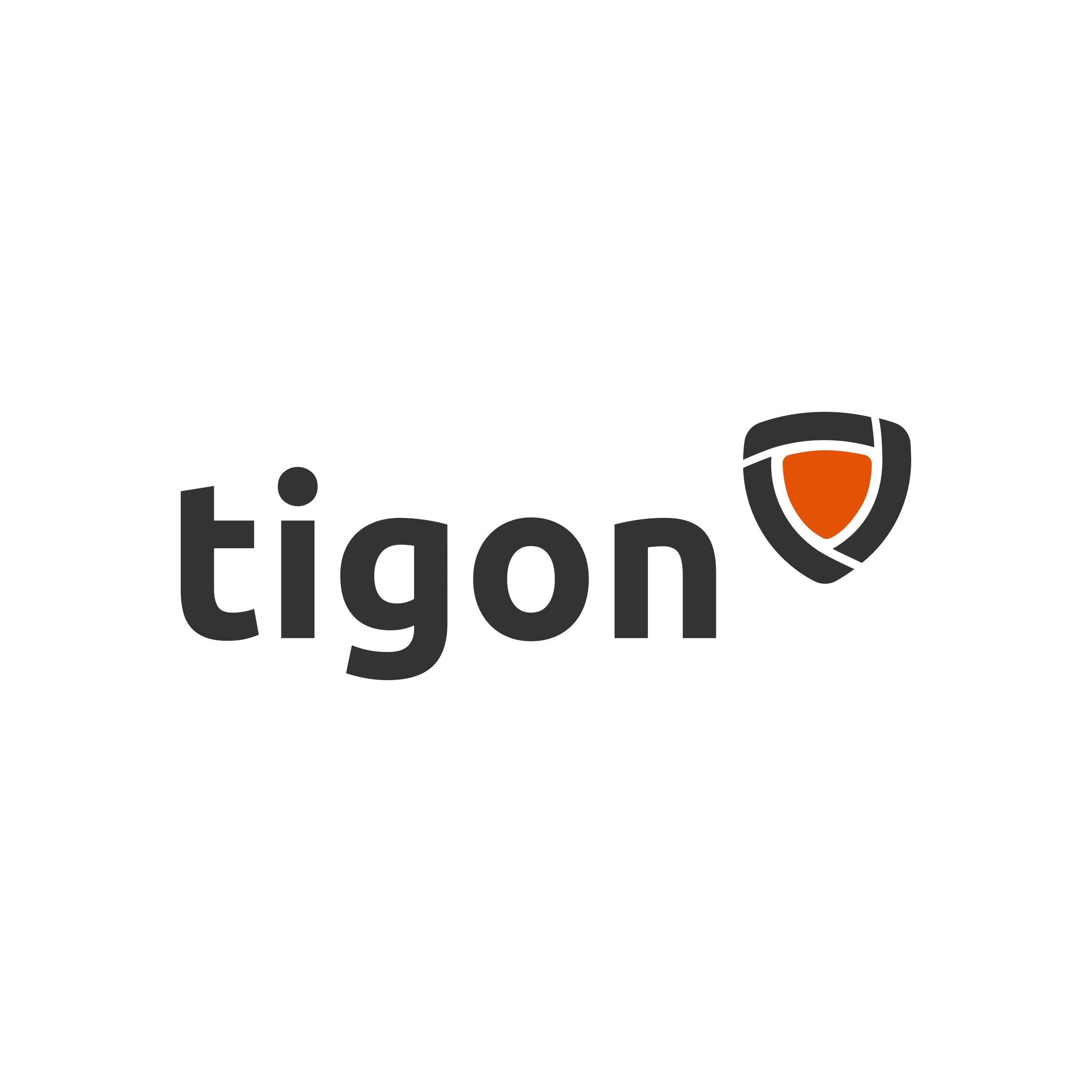 Tigon Logo by Casper Creative